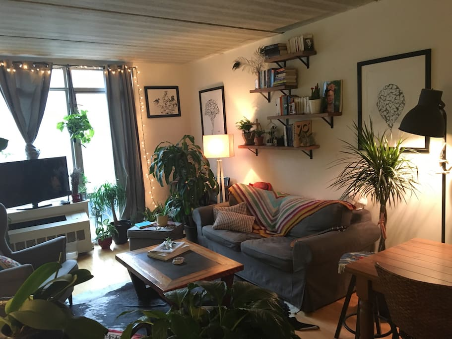 The living room is drenched in light due to the floor to ceiling windows and gives the room an added sense of space. Filled with plants this room almost feels like an indoor garden.