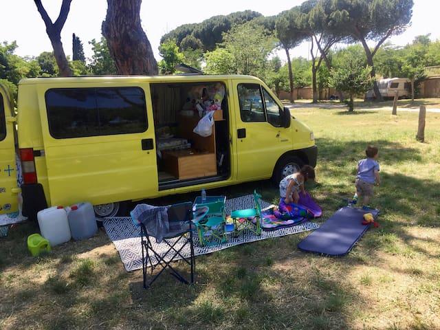 !Flamingo Van! ~ Big adventures start here!