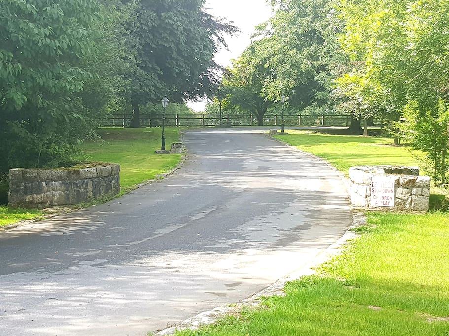 The avenue towards Grove Cottage & The Lodge