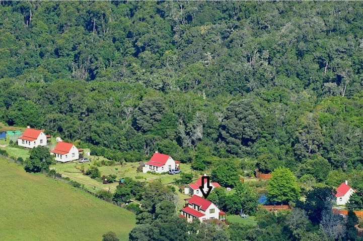 Authentic Woodcutter Luxury Knysna Forest Cottage - Rheenendal - Chalet