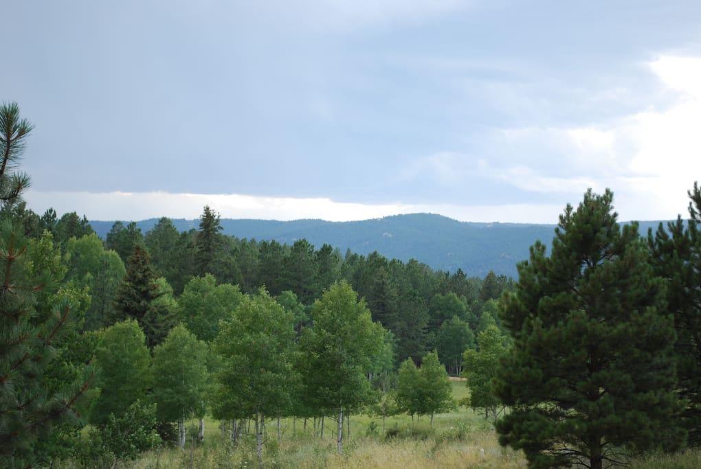 View from front door west