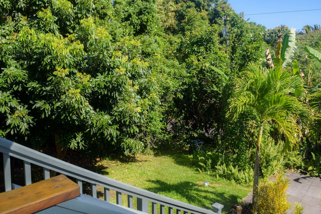 The home is very private, with a large grassy yard and many tropical plantings.
