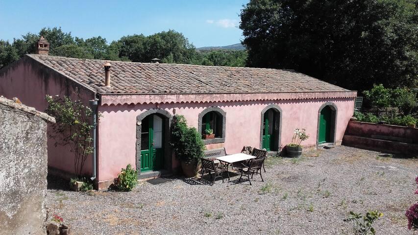 Casa di campagna con bosco e piscina - Solicchiata - Luontohotelli