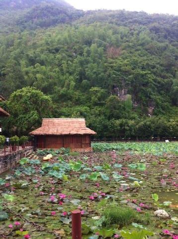 Dream house - Thành phố Thanh Hoá - House