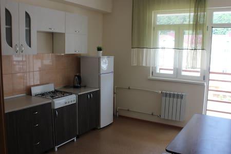 Двухкомнатная квартира 65 кв.м.в Эсто-садке - Estosadok