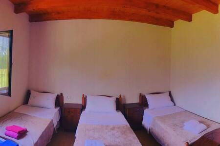 Guesthouse Freskia