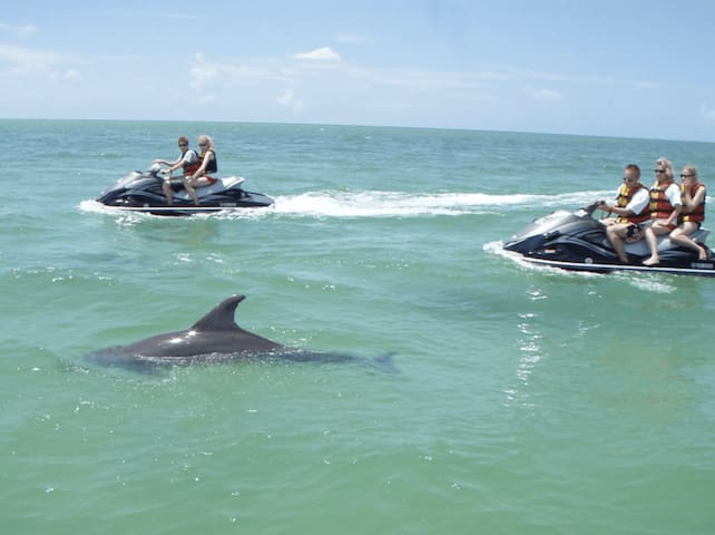 There are many waverunner rentals within walking distance of Mojo.   Curious and playful dolphins can usually be seen right off our beach.