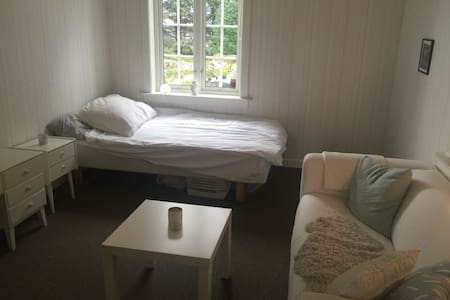 Koselig rom i stor enebolig - Giske - House