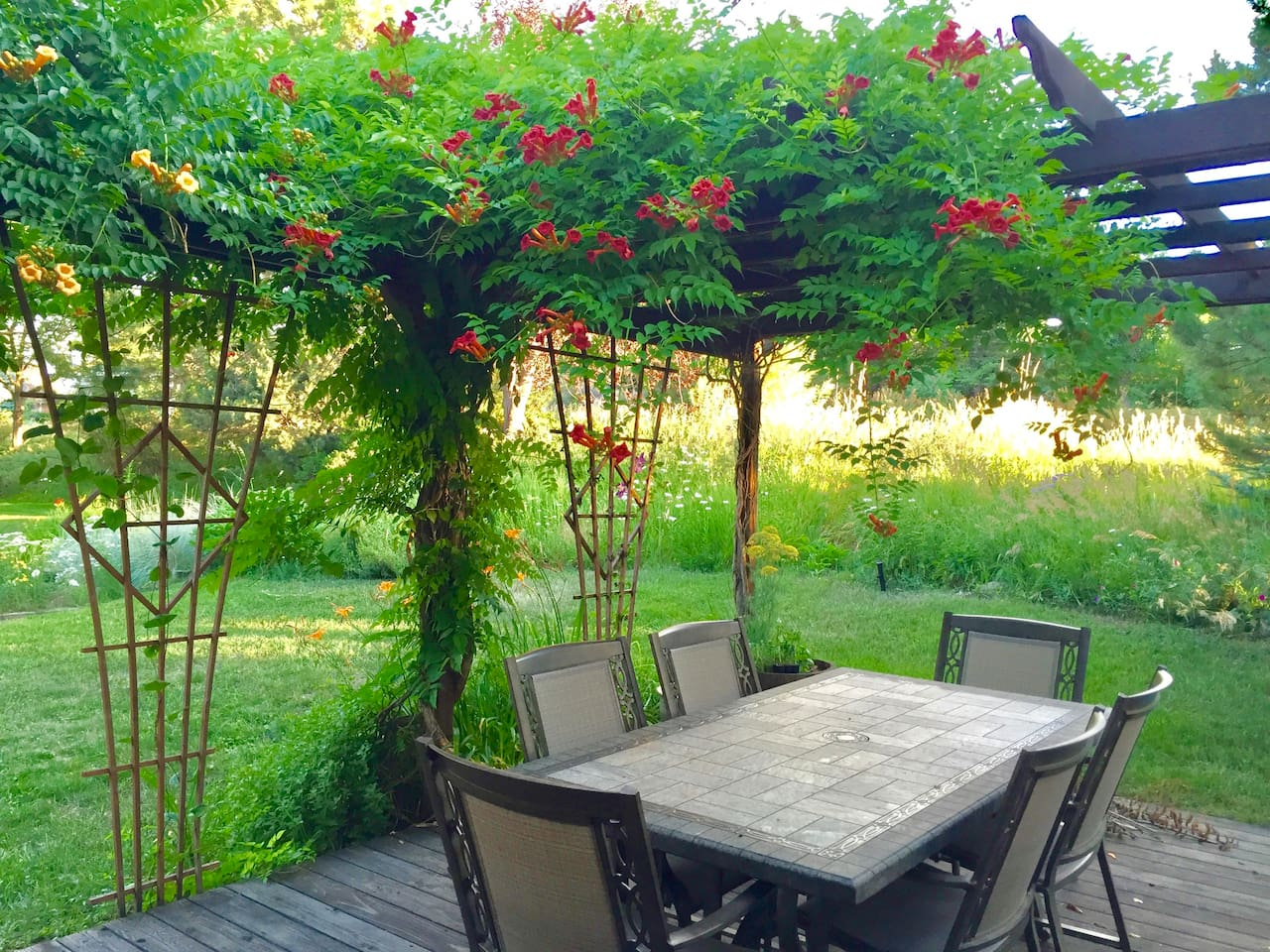 This gorgeous patio has seen a lot of family meals - different flowers grow on the pergola and along the hillside Spring through Fall.