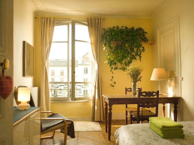 Sunny cosy room full center