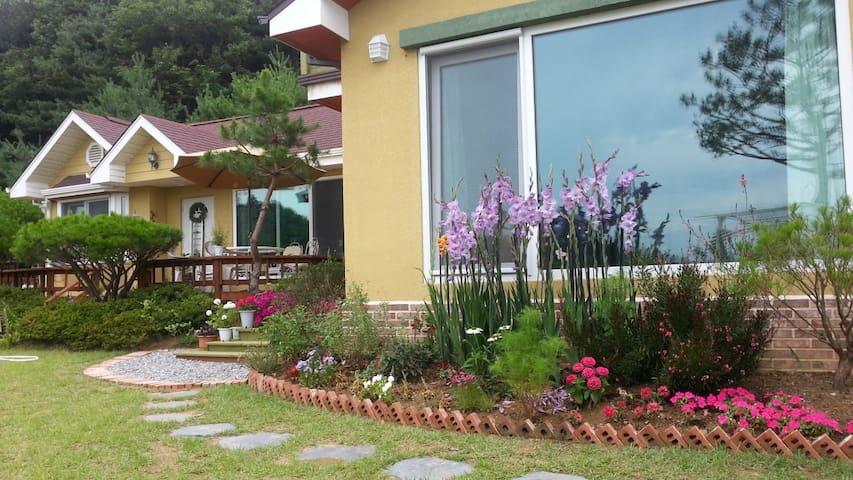 Lovely beautiful house & Garden