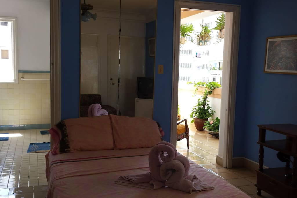 Room no 2 de tres. Con terraza privada con vista a Hotel Nacional, Hotel Capri, y Hotel Habana Libre