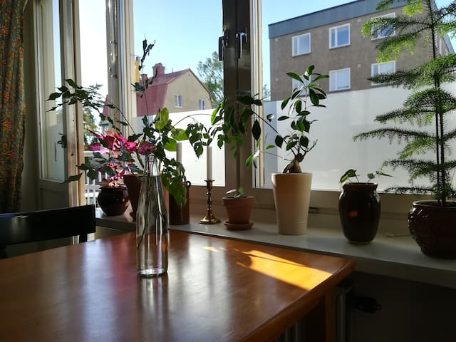 Apartment in lovely Midsommarkransen
