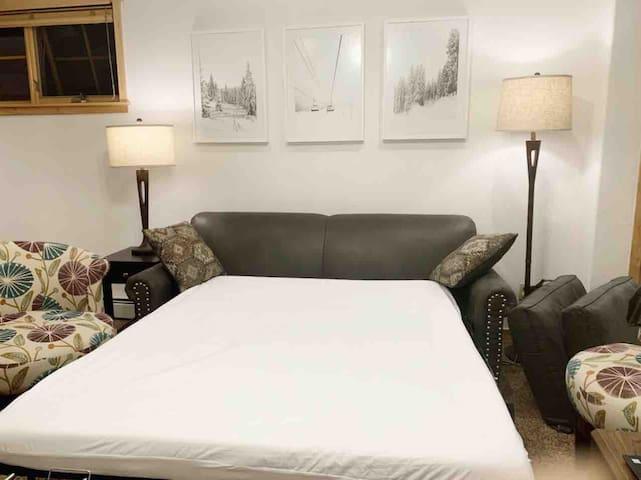 Queen memory foam sofa bed
