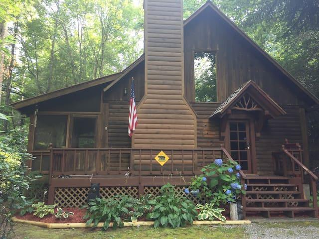 Cozy Mountain Retreat. 1BR with loft.