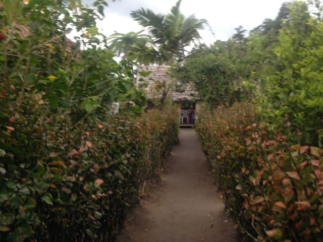 Volcano Island Paradise Bungalow