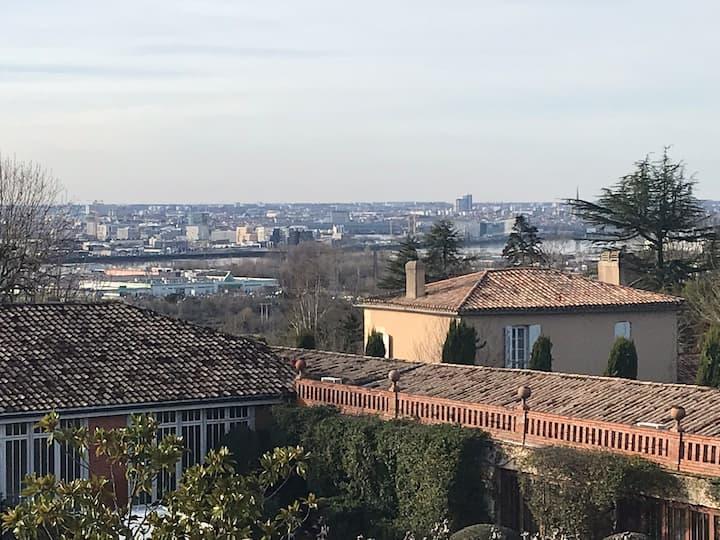 Vue panoramique sur bordeaux