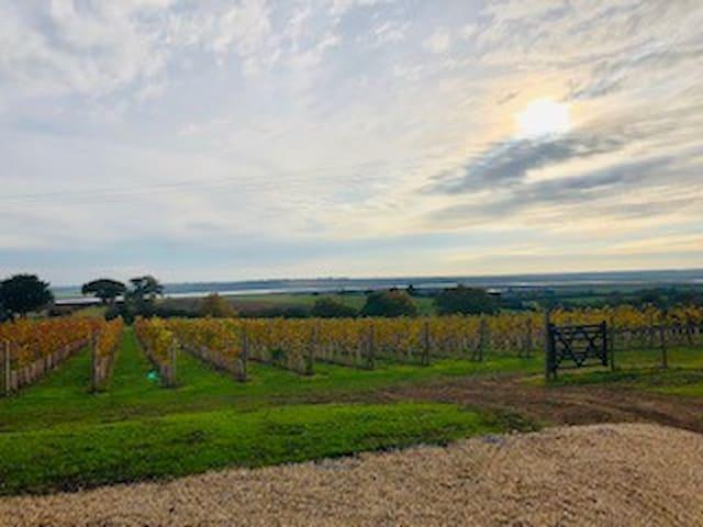 Self catering farm cottage, vineyard/river views.