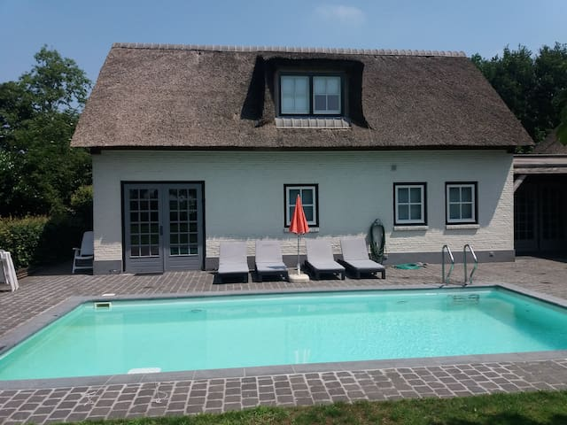 Guesthouse, pool and sunbeds