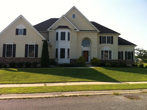 Spacious bsmt w a private bdrm and bath (shower)