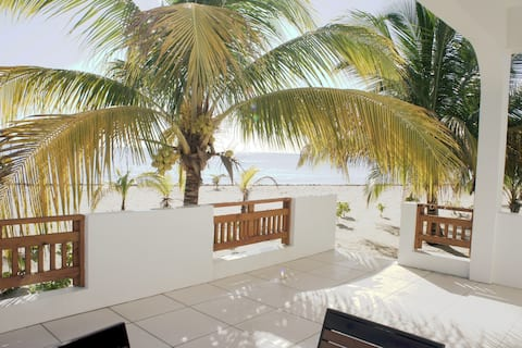 OceanFront Bungalow: gold standard approved!