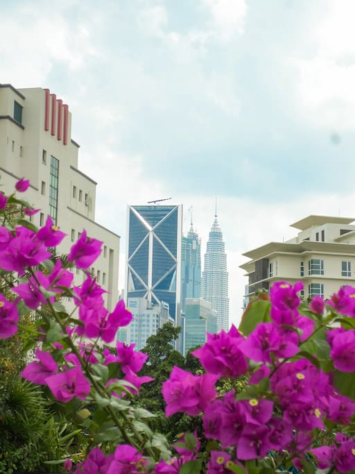 KLCC twin tower from private garden
