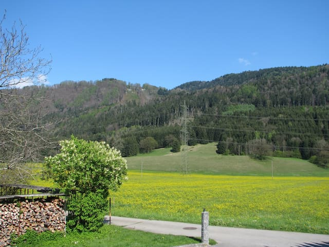 Ferienwohnung im Herzen von Vorarlberg