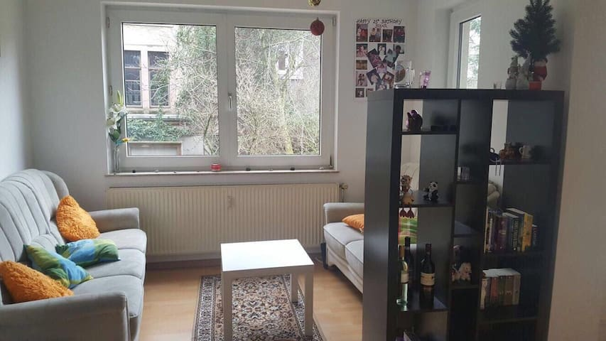 Great central&cozy full-apartment - Göttingen - Apartemen