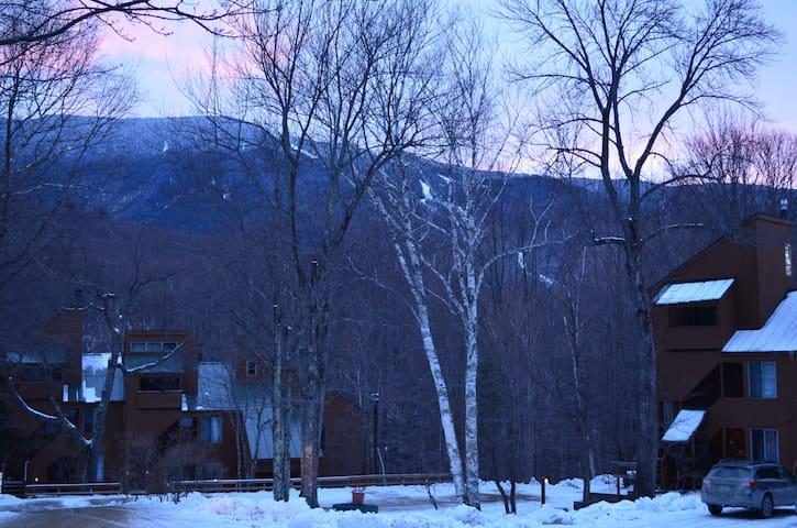Ski Condo @ MRG & Sugarbush
