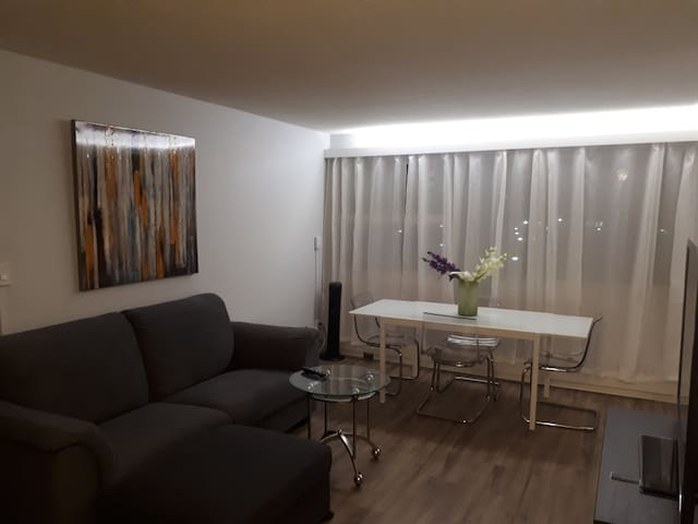 2bedroom condo newly renovated, bright and modern