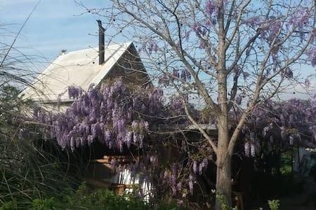 The Magical Kliphuis - Room 2 - Riebeek West