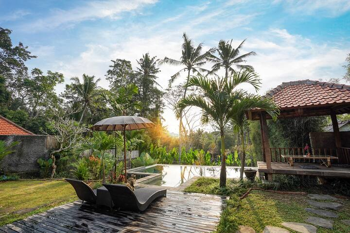Sunny Luxury Private Ubud Pool View at evening