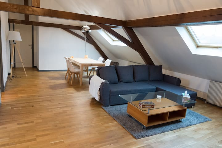 Grand appartement de charme, proche centre-ville. - Belfort - Apartment