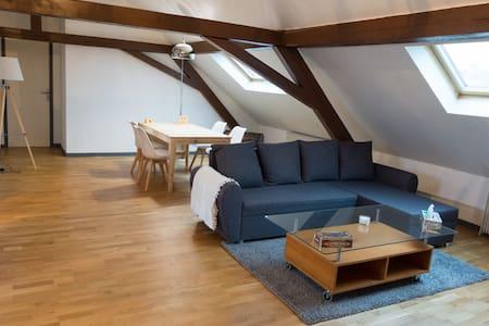 Grand appartement de charme, proche centre-ville. - Belfort - Apartemen