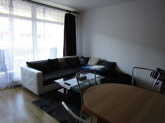 Apartment at city center of Liberec, parking place - Liberec - Departamento