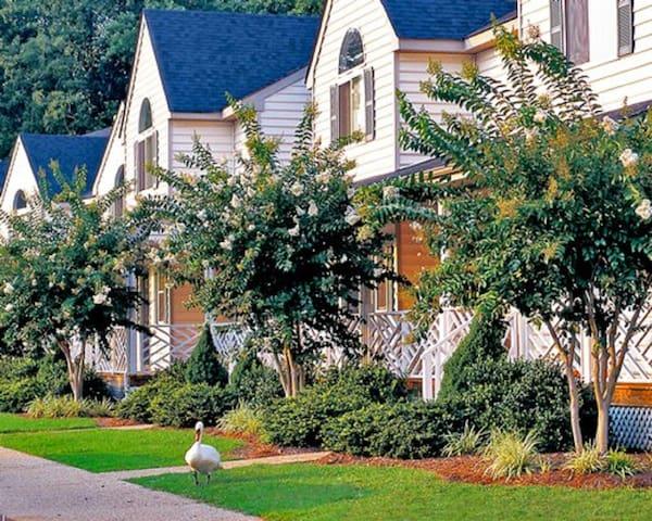 *Williamsburg, VA, 1 Bedroom#2/1046 - Williamsburg - Apartment