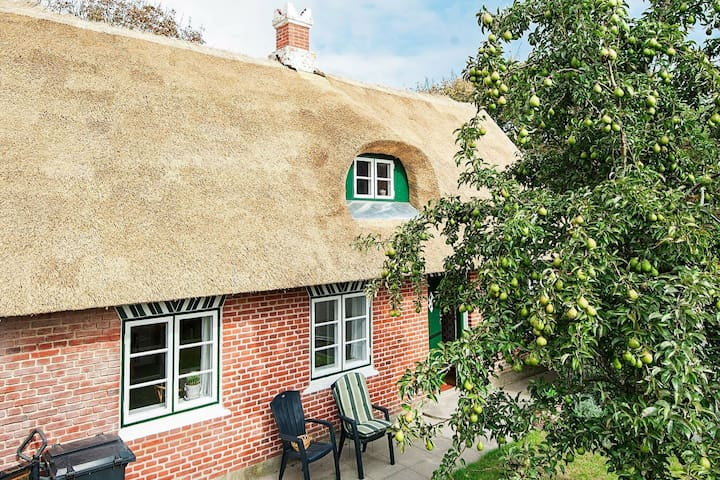 Thatched-Roof Holiday Home in Jutland with Terrace