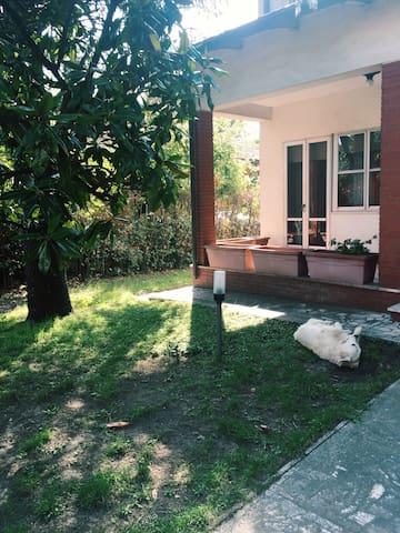 Casa delle Rondini Patio e giardino