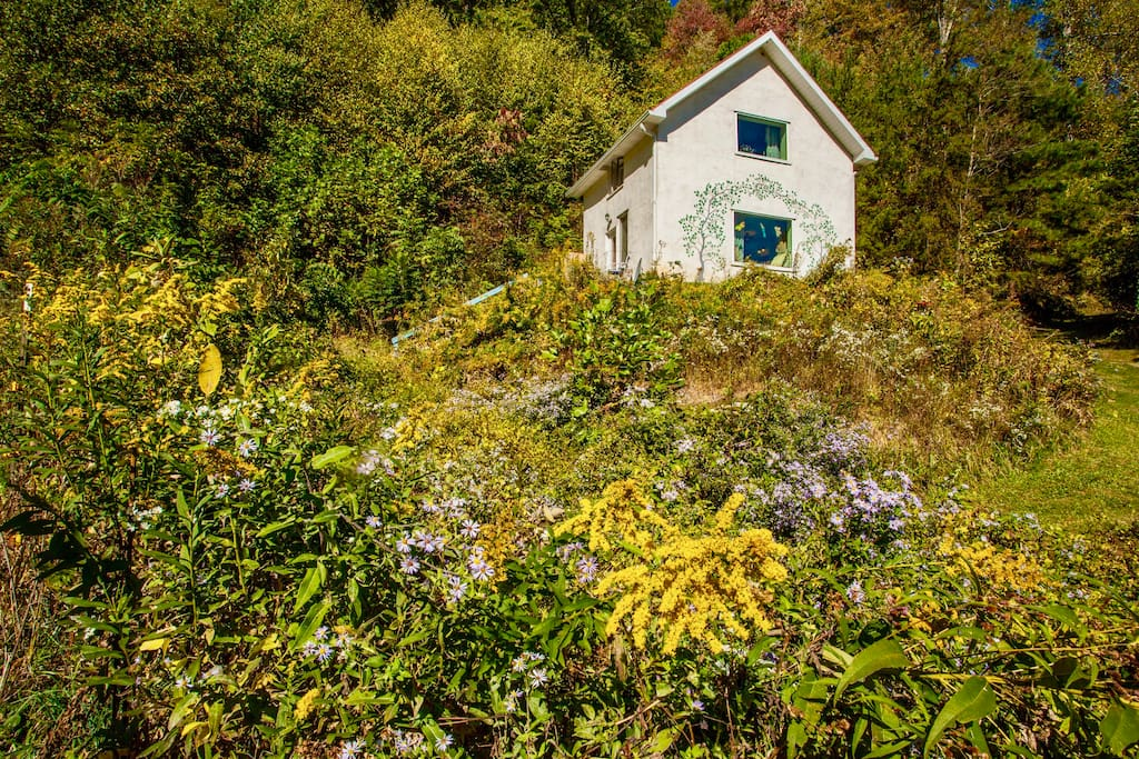 The two story, stand alone, private cottage close to Asheville is surrounded by exquisitely beautiful nature!