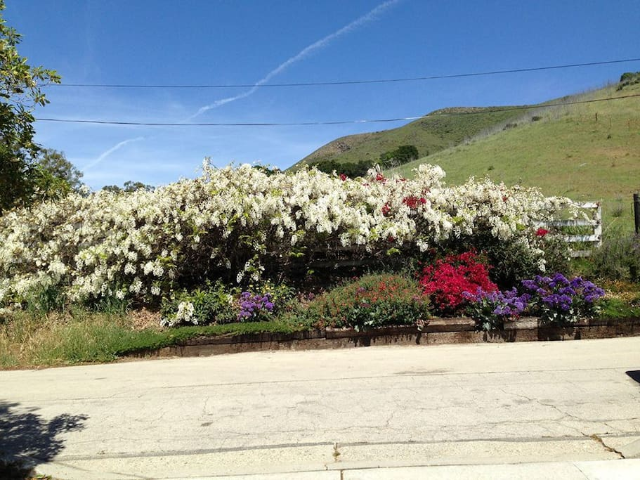 San Luis Obispo California United States Airbnb Autos Post