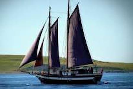 seilbåt/bobåt leies ut - Tvedestrand - Boat