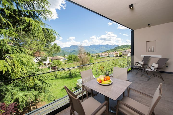 "Modern Apartment ""App. Blauburgunder"" with Mountain View, Wi-Fi, Garden, Pool, Sauna & Jacuzzi; Parking Available"