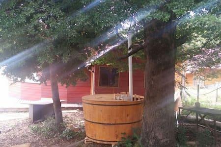 Domo en Caburgua, con tinaja  ciprés, Pucón - Caburgua - Alojamento ecológico