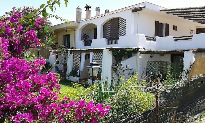 Villa Tulipano, affitto a Stintino