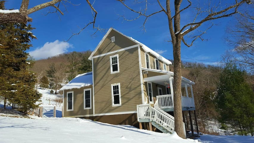 Mntn View Cottage-Dog Friendly 3BR/2BA - Mathias - Haus