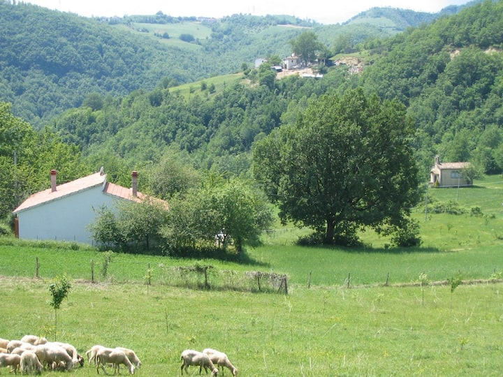 Villa con giardino in montagna