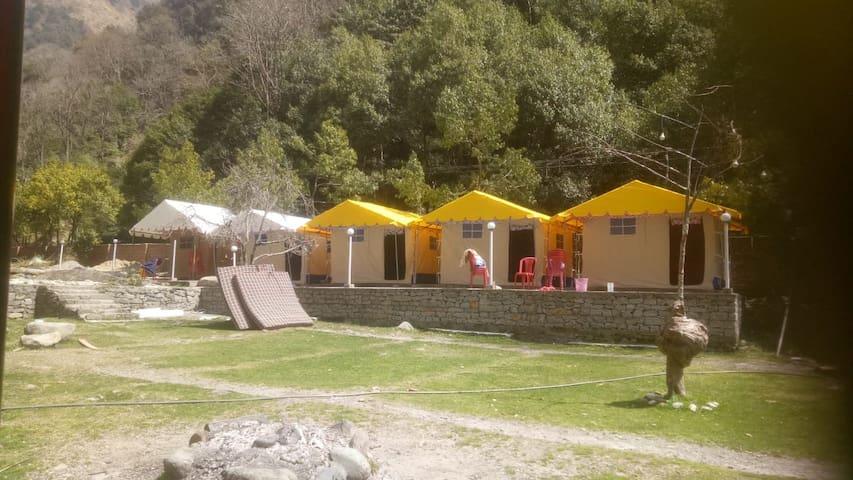 Camping at Barot