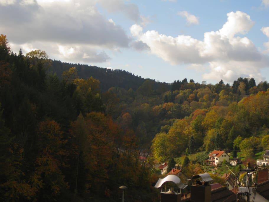 Herbst in Schönau