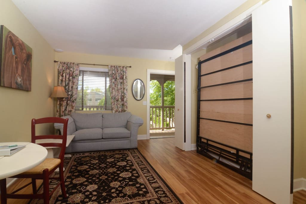 """...which contains a Murphy Bed--making efficient use of space, allowing for a comfortable sitting area during the day and a comfortable sleeping area at night. This is """"tiny home"""" before tiny home was cool!"""