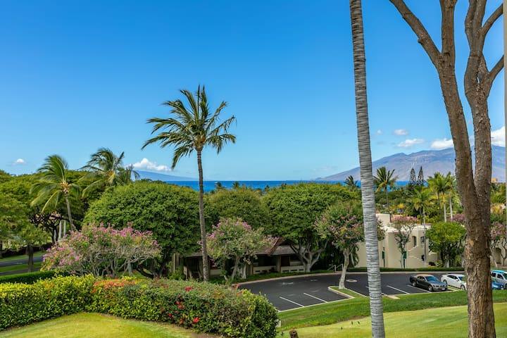 Palms at Wailea #1604, 1Bd/2Ba, Spacious, Ocean View, Next to Keawakapu Beach